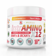 INTRAMINOS X12 – THE MOST EFFECTIVE AMINOS